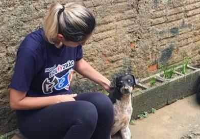 Protetoras blumenauenses promovem castração de animais na Rua Coripós neste sábado (23)