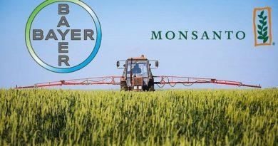 Bayer concluirá compra da Monsanto em 7 de junho
