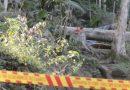 Homem fica em situação gravíssima em acidente de trabalho no sul de Blumenau